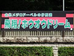 20171008 東京8R 3歳上500万下 ホウオウドリーム 01