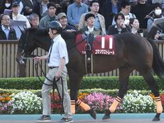 20161105 東京11R 京王杯2歳S(G2) コウソクストレート 09