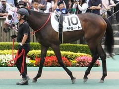 20170611 東京6R 2歳牝馬メイクデビュー サラート 06