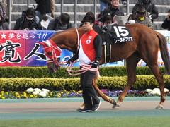 20170211 東京9R テレビ山梨杯(牝1000) レーヌドブリエ 05