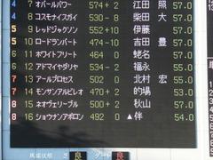 20141018 東京12R ショウナンアポロン 01