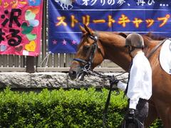 20160604 東京2R 3歳未勝利 ダイワレンジャー 03