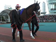 20151229 大井10R 東京大賞典 (G1) ユーロビート 17