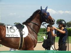 20190928 中山5R 2歳牝馬メイクデビュー アルソリート 18