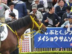 20141102 東京4R ノーブルクリスタル 10