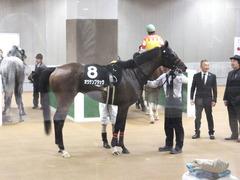20141012 東京10R レジェンドTC オウケンブラック 14