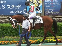 20190518 東京4R 3歳未勝利 オビワンズドーン 14