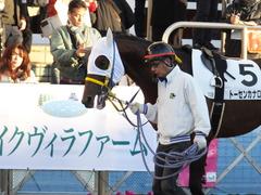 20161210 中山12R (500) トーセンカナロア 07