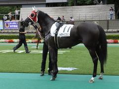 20140628 東京2R トマトリコピン 09