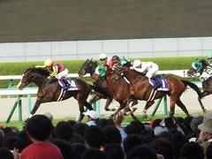 20180401 阪神11R 大阪杯(G1) トリオンフ 10