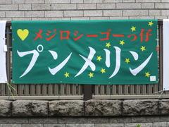 20170625 東京1R 3歳牝馬未勝利 プンメリン 01
