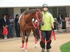 20180929 中山5R 2歳牝馬メイクデビュー オトナノジジョウ 06