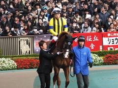 20151129 東京10R ウェルカムS アッシュゴールド 12
