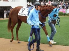 20180922 中山2R 2歳牝馬未勝利 ヴァルドワーズ 07