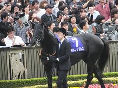 20141102 東京11R 天皇賞(秋) サトノノブレス 01