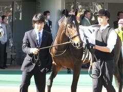 20131116 東京 サンドラバローズ09