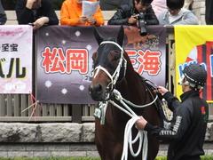 20151031 東京10R 赤富士S ショウナンアポロン 11