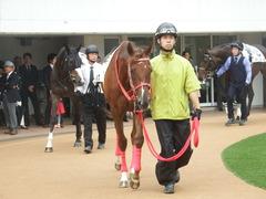 20180929 中山5R 2歳牝馬メイクデビュー オトナノジジョウ 14