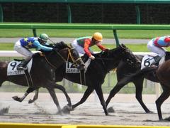 20150628 東京6R 3歳未勝利 コスモポッポ 13