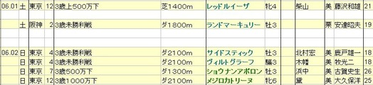 2013060102想定