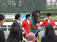 20151122 京都11R MCS(G1) モーリス 19
