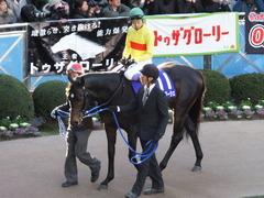 20131222 有馬記念 ラブイズブーシェ 04