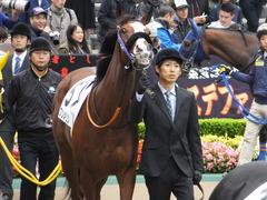 20161030 東京1R 2歳未勝利 プンメリン 12