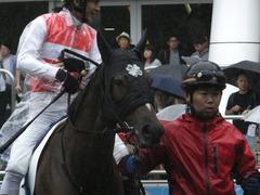 20170917 中山5R 2歳牝馬メイクデビュー ショウナンアーデン 09