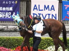 20150628 東京11R パラダイスS アルマディヴァン 07