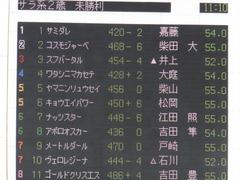 20151012 東京3R 2歳未勝利 ヤマニンリュウセイ 01