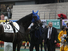 20141129 東京5R 2歳メイクデビュー タニオブキャップ 06