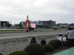 20140915 大井11R 東京記念 ユーロビート 17