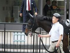 20161023 東京9R くるみ賞 2歳500万下 コウソクストレート 02