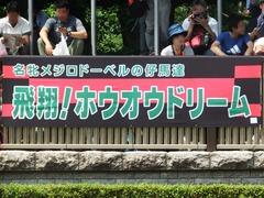 20180527 東京12R 目黒記念(G2) ホウオウドリーム 01