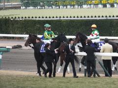 20141228 中山10R 有馬記念 サトノノブレス 07