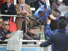 20180318 中山1R 3歳牝馬未勝利 ラプターゲイル 09