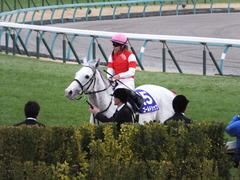 20151227 中山10R 有馬記念(G1) ゴールドシップ 23
