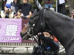 20151031 東京5R 2歳メイクデビュー ラルゴランド 08