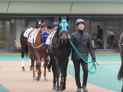 20160130 東京3R 3歳未勝利 アイルーロス 02