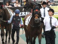 20170507 東京8R 4歳上(1000) オウケンブラック 10
