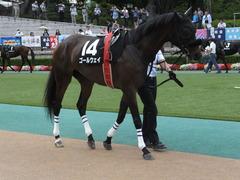 20140629 東京10R ゴールウェイ 02