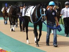 20141026 東京4R サウンドアラムシャ 06