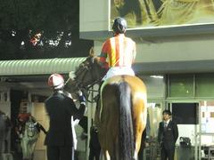 20171129 大井11R 勝島王冠(S3) ユーロビート 07