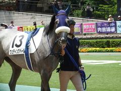 20180609 東京6R 3歳牝馬未勝利 ウェディングベール 03