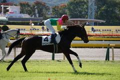 20191110 東京2R 2歳牝馬未勝利 ミヤコシャンティ 18