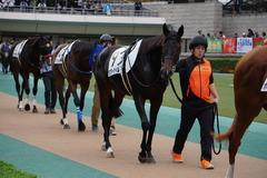 20191026 東京12R 3歳上1勝クラス ラプターゲイル 11