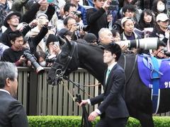20161030 東京11R 天皇賞・秋(G1) サトノノブレス 07