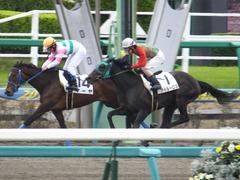 20160321 中山1R 3歳未勝利(牝) アイルーロス 14