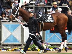 20150321 中山10R 韓国馬事会杯 ショウナンアポロン  02
