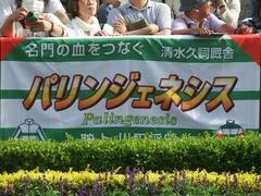 20190526 東京12R 目黒記念(G2) パリンジェネシス 02